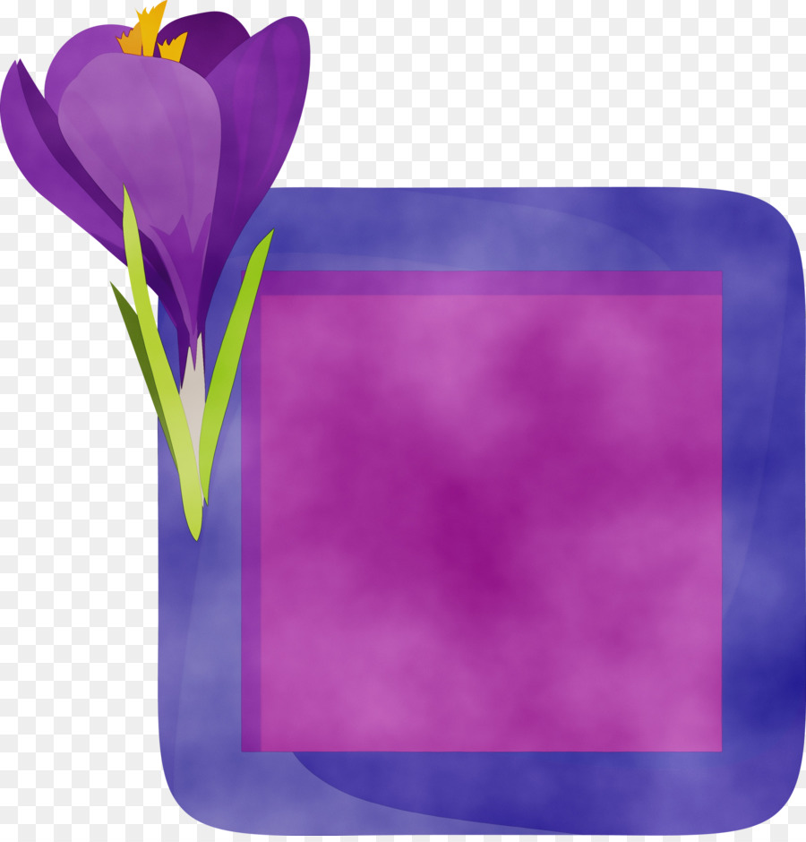Descarga gratuita de Flor, Tulip, Pétalo Imágen de Png